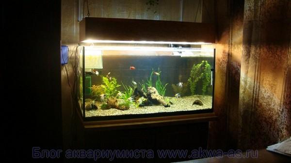 alt=Светильник для аквариума своими руками, ощий вид
