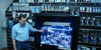 http://akwa-as.ru/moj-prostoj-morskoj-akvarium/Море своими руками