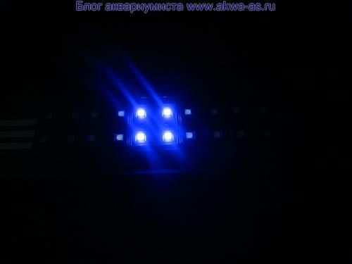 alt=светодиодный светильник для морского аквариума