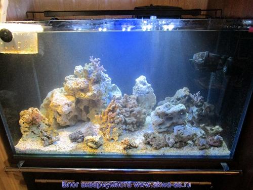 alt=Растановка камней в аквариуме