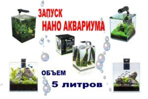 alt=нано аквариум