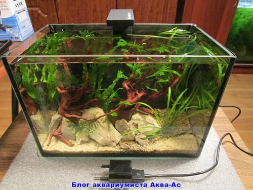 alt=освещение аквариума