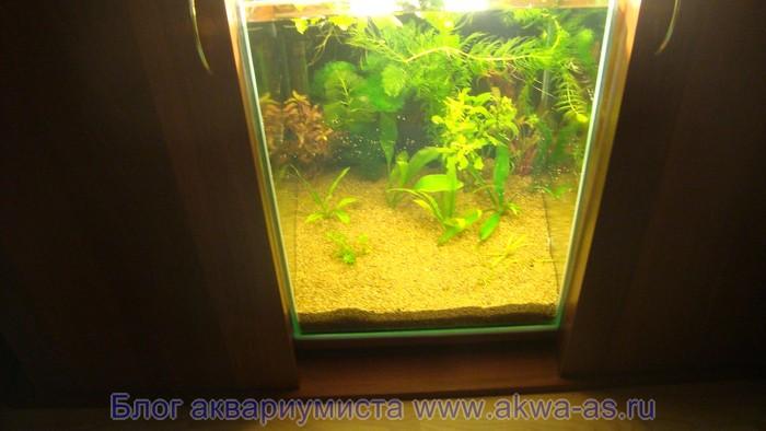 Наполненный аквариум с землей