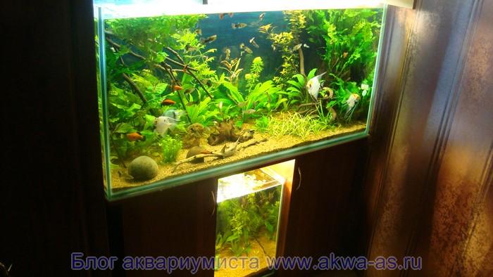Аквариумный комплекс на два аквариума