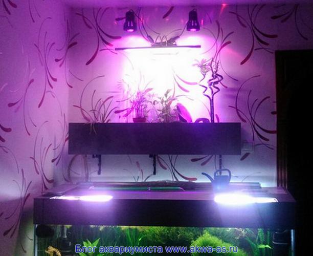 фитофильтр в аквариума