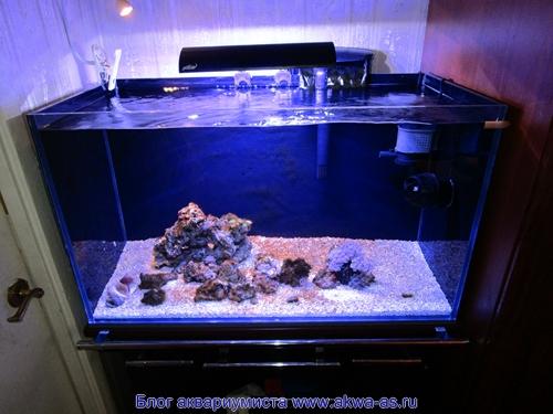 alt=Этап запуска морского аквариума