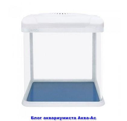 alt=СИЛОНГ (7 л)