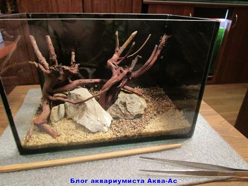 камни в нано аквариуме