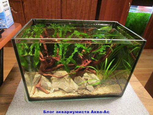 внешний вид нано аквариума